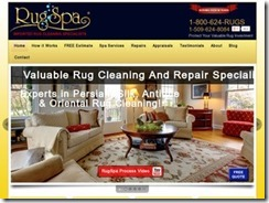 How to Choose the Correct Oriental Rug Cleaning Service